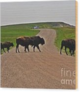 Buffalo Crossing Wood Print