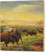 Buffalo Fox Great Plains Western Landscape Oil Painting - Bison - Americana - Historic - Walt Curlee Wood Print
