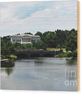 Buffalo History Museum And Delaware Park Hoyt Lake Oil Painting Effect Wood Print