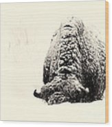 Buffalo Hump Wood Print