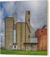 Buffalo Malting  7d08362 Wood Print