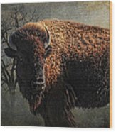 Buffalo Moon Wood Print