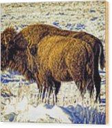 Buffalo Painting Wood Print