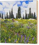 Buffalo Pass Colorado Wildflowers Wood Print