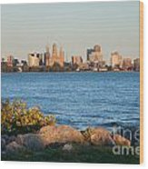Buffalo Skyline From Fort Erie Wood Print