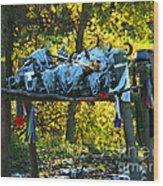 Buffalo Spiritual Grounds Wood Print