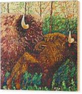 Buffaloes Wood Print