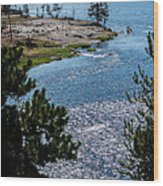Buffs On River Wood Print