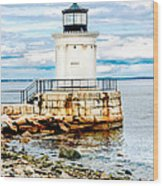 Bug Light Study Wood Print