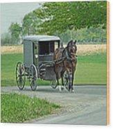 Buggy Ride Wood Print