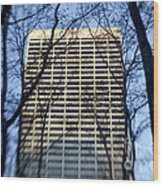 Building Through Trees Wood Print by Tony Cordoza