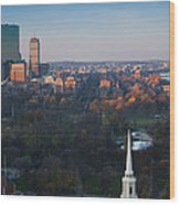 Buildings In A City, Boston Common Wood Print