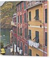 Buildings Of Vernazza Wood Print