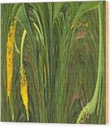 Bulbinella Latifolia Abstract Wood Print