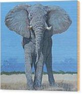 Bull Elephant Wood Print