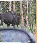 Bull Wood Print by Jeff Pickett