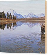 Bull Moose Grand Teton National Park Wy Wood Print