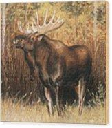 Bull Moose Wood Print by Karen Cade