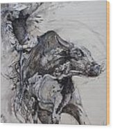 Bull Rider Wood Print by Bob Graham