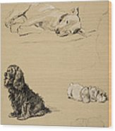 Bull-terrier, Spaniel And Sealyhams Wood Print by Cecil Charles Windsor Aldin