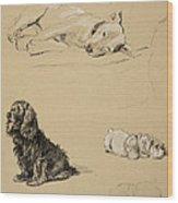 Bull-terrier, Spaniel And Sealyhams Wood Print