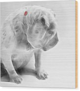 Bulldog 3 -  Featured In Comfortable Art Group Wood Print