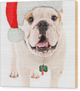 Bulldog Santa Wood Print