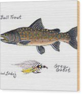 Bulltrout And Grey Ghost Fly Wood Print