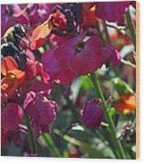 Bumble Bee Among The Wallflowers IIi Wood Print