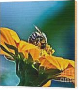 Bumble Bee I Wood Print