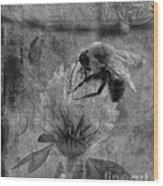 Bumble Bee Post Card 2 Bw Wood Print