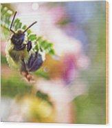 Bumblebee Disco Wood Print