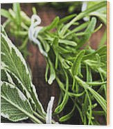 Bunches Of Fresh Herbs Wood Print