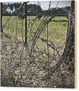 Bundled Barbed Wire Wood Print