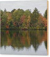 Bunganut Lake Foliage 4 Wood Print