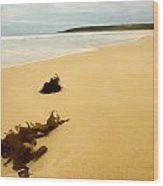 Bunker Bay - Western Australia Wood Print