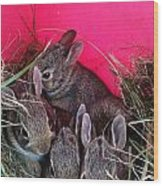 Bunnies In Pink Wood Print