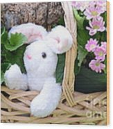Bunny In A Basket Wood Print