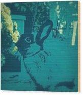Bunny Poster Wood Print