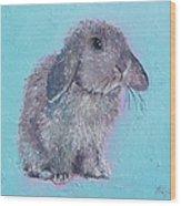 Bunny Rabbit Wood Print
