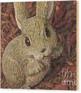 Bunny Wood Print