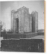 Bunratty Castle - Ireland Wood Print