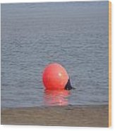 Buoy In The Water Wood Print