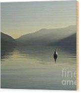 Buoy On An Alpine Lake Wood Print
