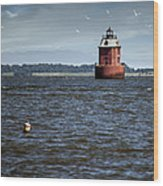 Buoy What A Lighthouse Wood Print
