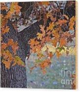 Bur Oak Tree In Autumn Wood Print