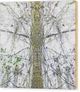 Burden Center Spirit Tree Wood Print