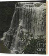 Burgess Falls Tn Wood Print