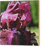 Burgundy Breeze Wood Print