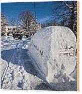 Buried In Snow Wood Print
